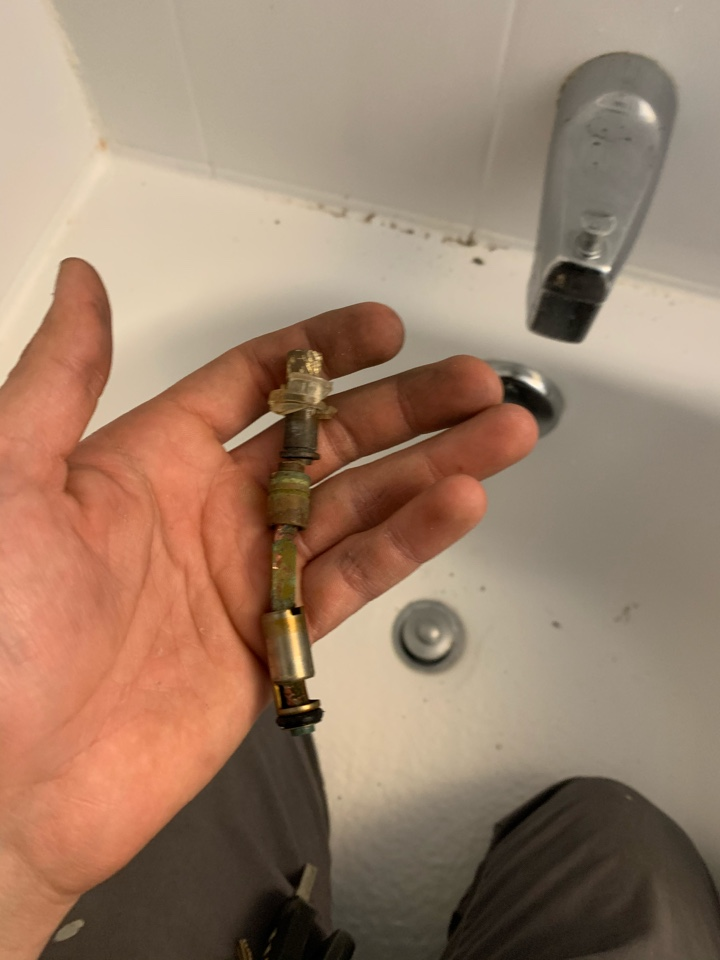 South Elgin, IL - Replacement of shower cartridge