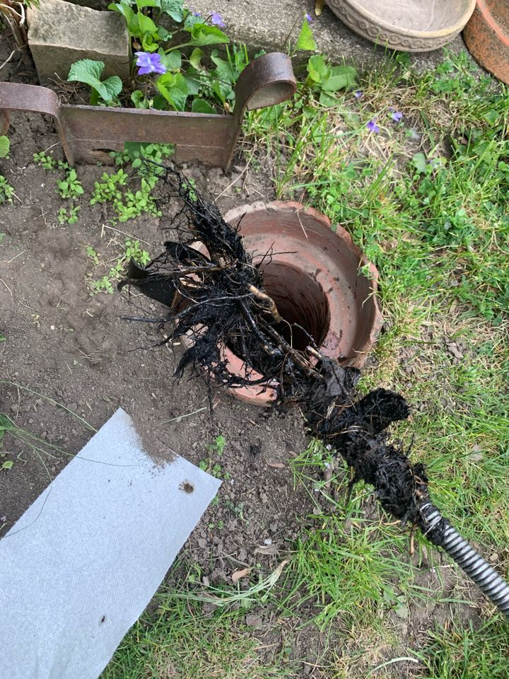 Park Ridge, IL - Main sewer cleaning