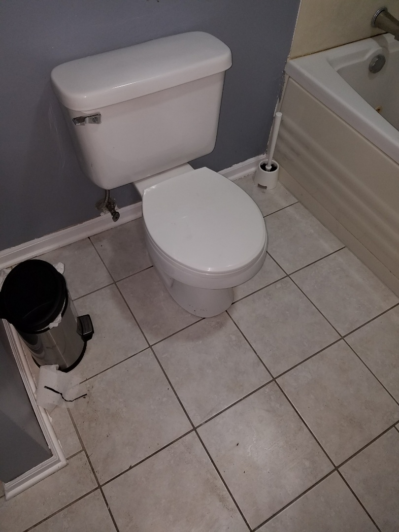 Pull a toilet to access a main sewer for rodding due to present blockages backing up the bathtub.