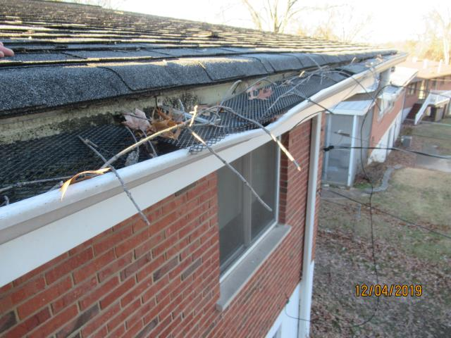 St. Louis, MO - EBS is performing the repair to this house after a tree fell against the roof and gutter.  We will be replacing damaged architectural shingles and underlayment and installing a new seamless aluminum gutter on the rear of the roof along with new gutter screens.