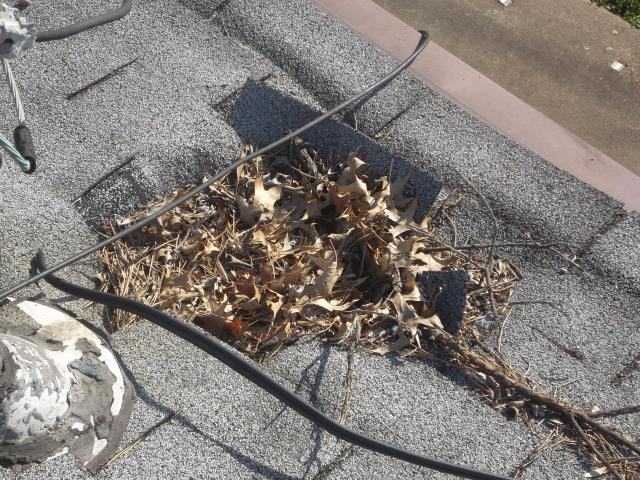Florissant, MO - Pricing to replace this roof with holes in the wood decking