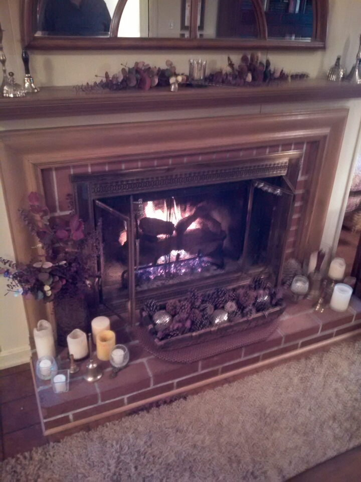 Crofton, MD - Peterson gas fireplace insert & gas log set installation repair service call in Crofton Maryland 21114