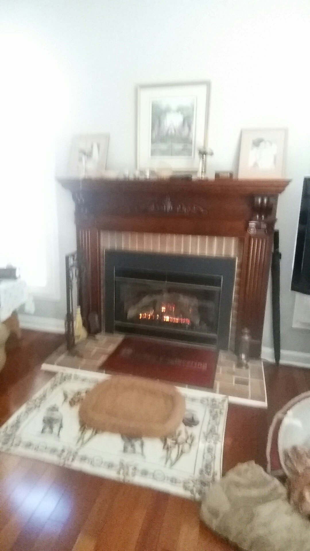 Crofton, MD - Mendota gas fireplace insert & gas logs installation repair service call Crofton Maryland 21114