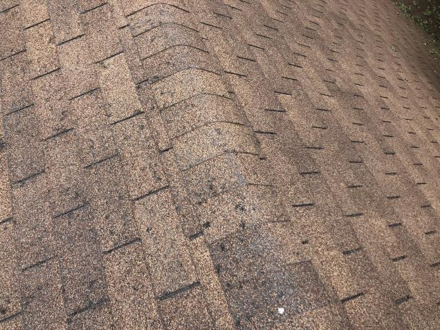 Georgetown, TX - This picture is some significant hail damage to a shingle roof in Georgetown.  Roofs like this will leak over time and need to be replaced. Call us for your shingle roof needs in Georgetown.