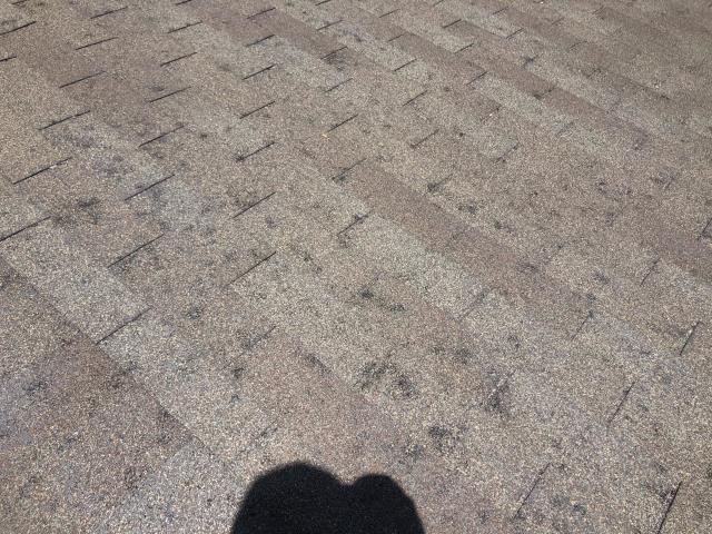 Georgetown, TX - Here is another example of significant hail damage we are seeing in Georgetown, TX.  If you live in Georgetown, please call RoofCrafters for a free roof inspection.  We will assess your roof and let you know if you should file a claim with your insurance provider.  Roofs that look like this will be in need of a full roof replacement.