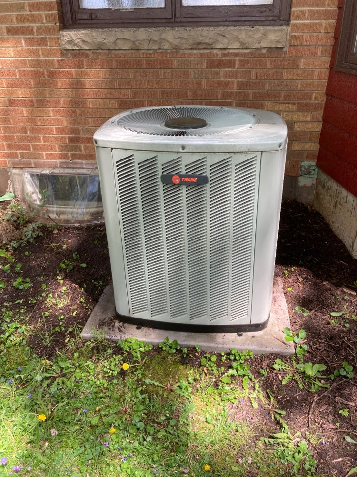 Orangeville, IL - Air conditioner inspection in Orangeville. Nice Trane baby!