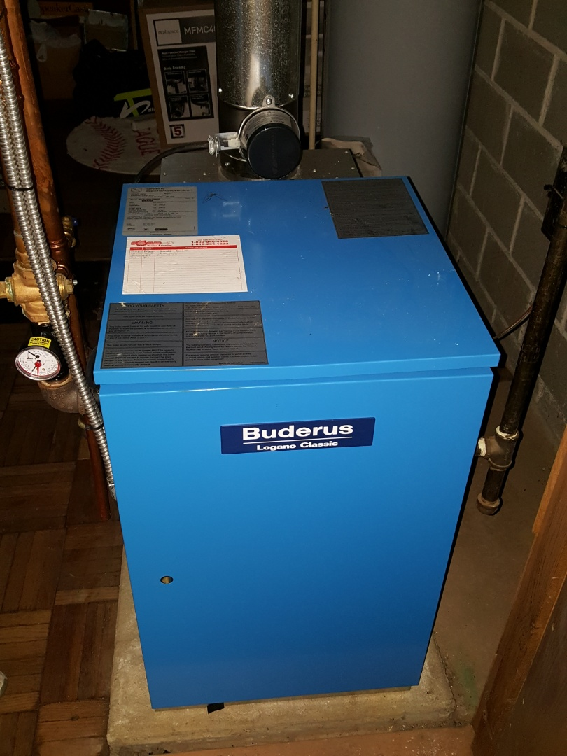 Mount Morris, IL - Seasonal maintenance on a Buderus boiler. I'm blue dab a dee da ba dye.