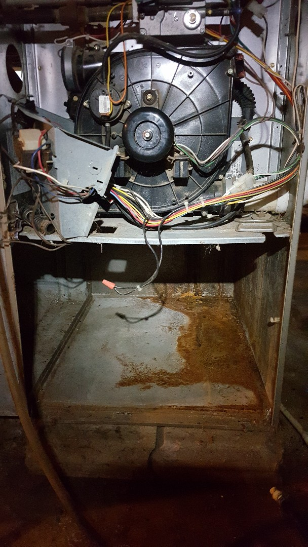 German Valley, IL - Bryant furnace blower motor repair