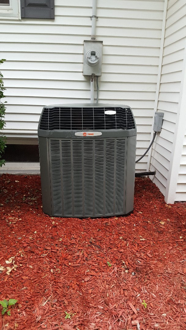 Warren, IL - Seasonal maintenance on a Trane air conditioner. Mulch makes the unit stand out more!!! What a beauty!