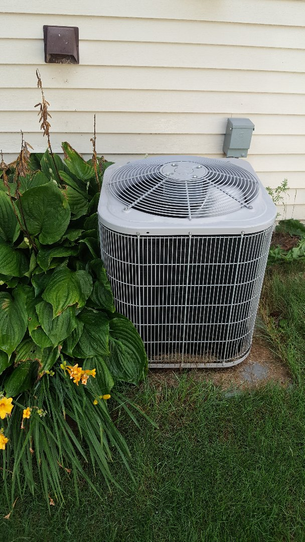 Freeport, IL - Annual maintenance on a carrier air conditioner. Remember to keep plants away from unit at least a foot!!!