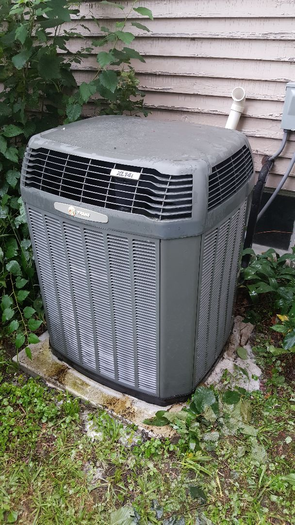 Freeport, IL - Seasonal maintenance on a Trane air conditioner. Chemical cleanse on this one. Unit running much cooler now!