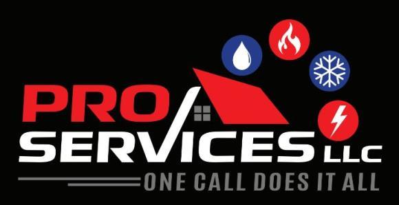Pro Services LLC