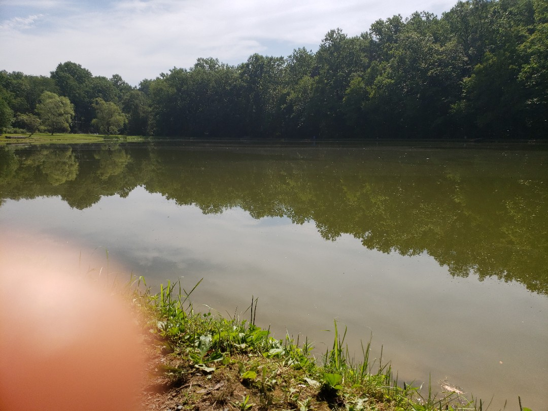 Danielsville, PA - Fishing before my ductless appointment
