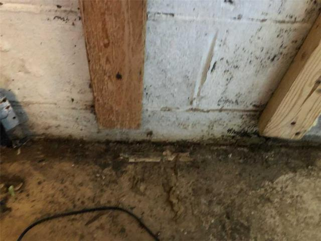Rossville, GA - Customer has water and mold in basement, we have a great solution to fix this!