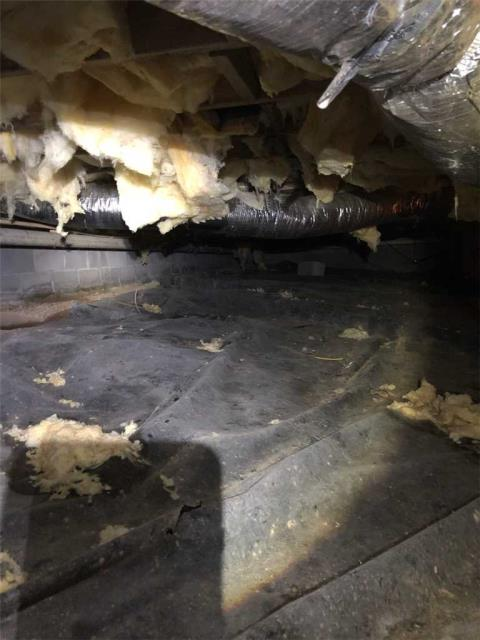 Murphy, NC - Inspection today in a crawlspace with high moisture levels