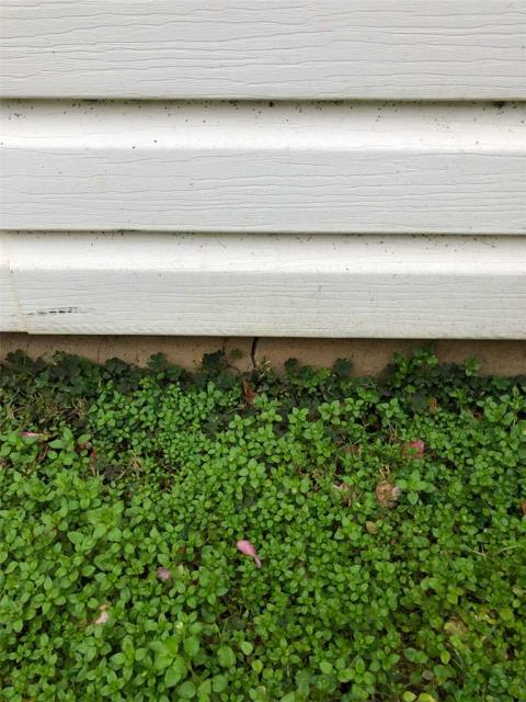 Carrollton, GA - Inspection today in Carrollton GA, customer has some cracks in their foundation and water is getting in.