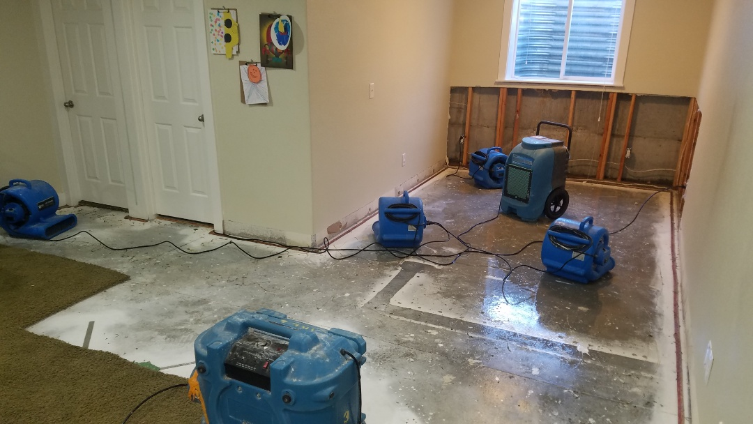 Garden City, ID - Water damage. Mold. Flood.