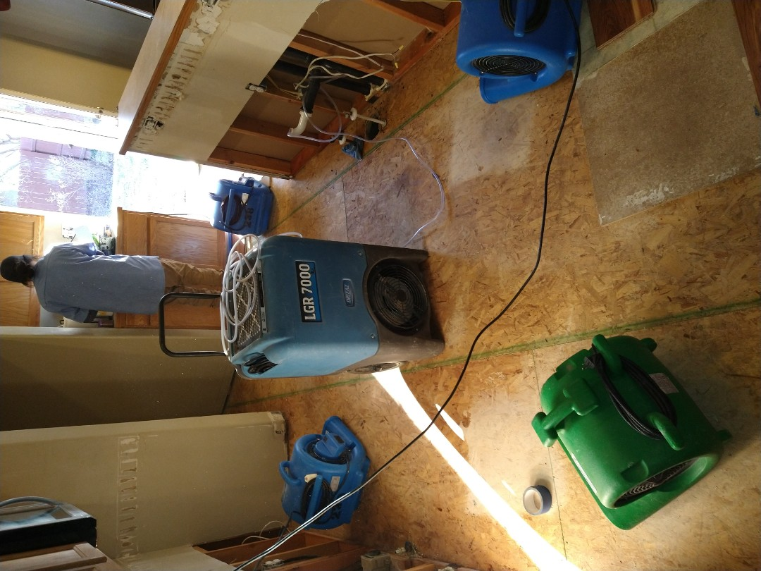 Kitchen flood. Leaking pipes. Mold. Water damage.