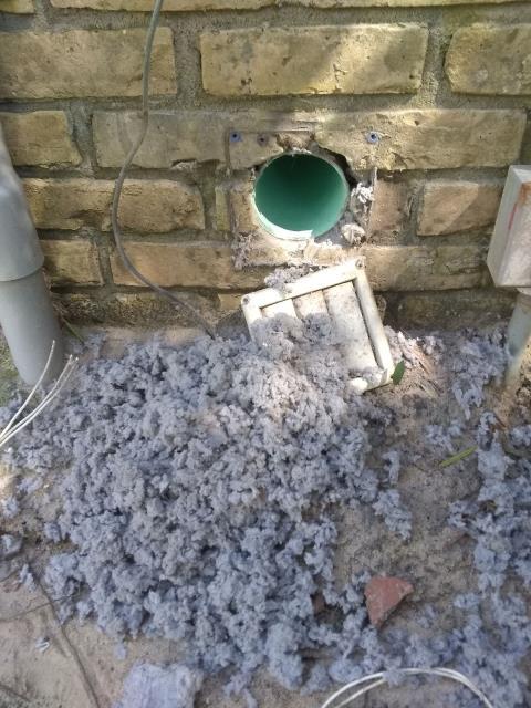 Cleaned dryer hose!
