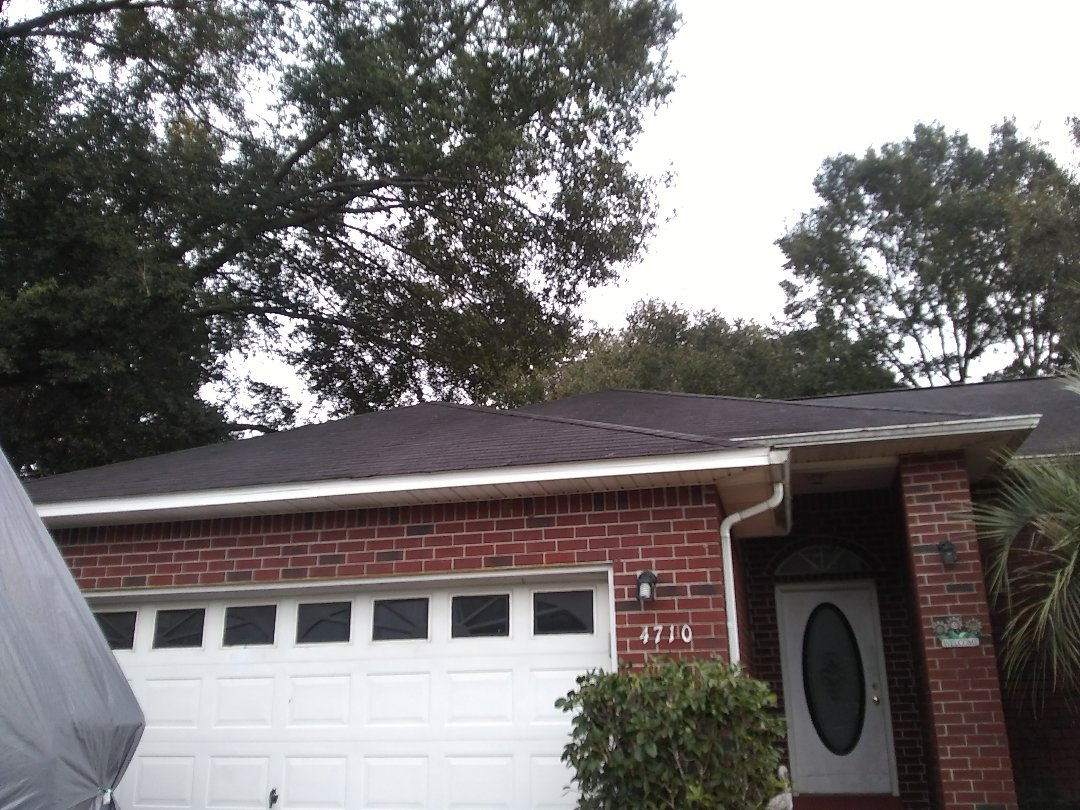 Pace, FL - Trimmed limbs off of roof and cleaned gutters.