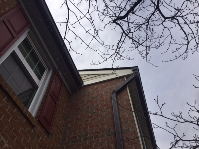 Alexandria, VA - Rake and fascia board was loose, rotting and in need of painting. This is an easy fix and can be replaced with new primed or painted PVC or replace with PVC synthetic.