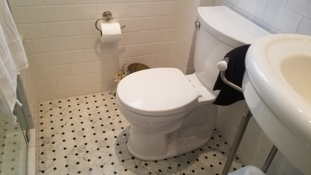 Installed owners toliet