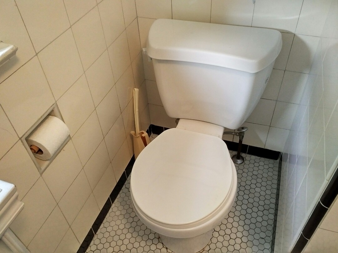 Troubleshooting toilet that won't stop running
