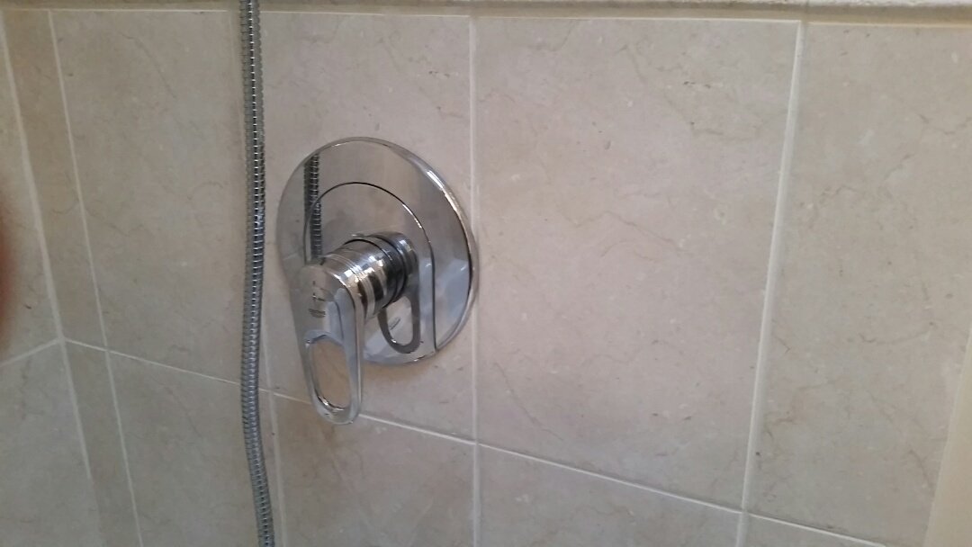 North York, ON - Repaired Grohe shower