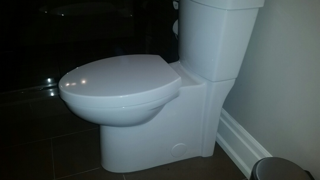 Cleared blocked toliet