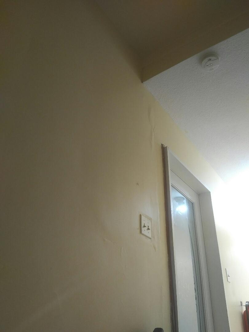 Investigating leak thru ceiling