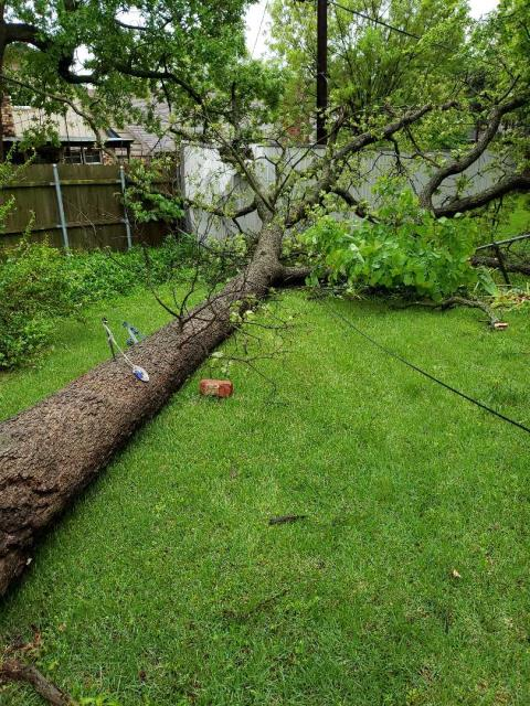 Oklahoma City, OK - Emergency electrical repair.  Power line pulled down by tree damaged in recent storm.  The customer has lost all power.  Our electrician will be replacing the service line, riser, meter base and upgrading the electric panel.  All of this work is lifetime guaranteed and will be done to NEC electrical code requirements.