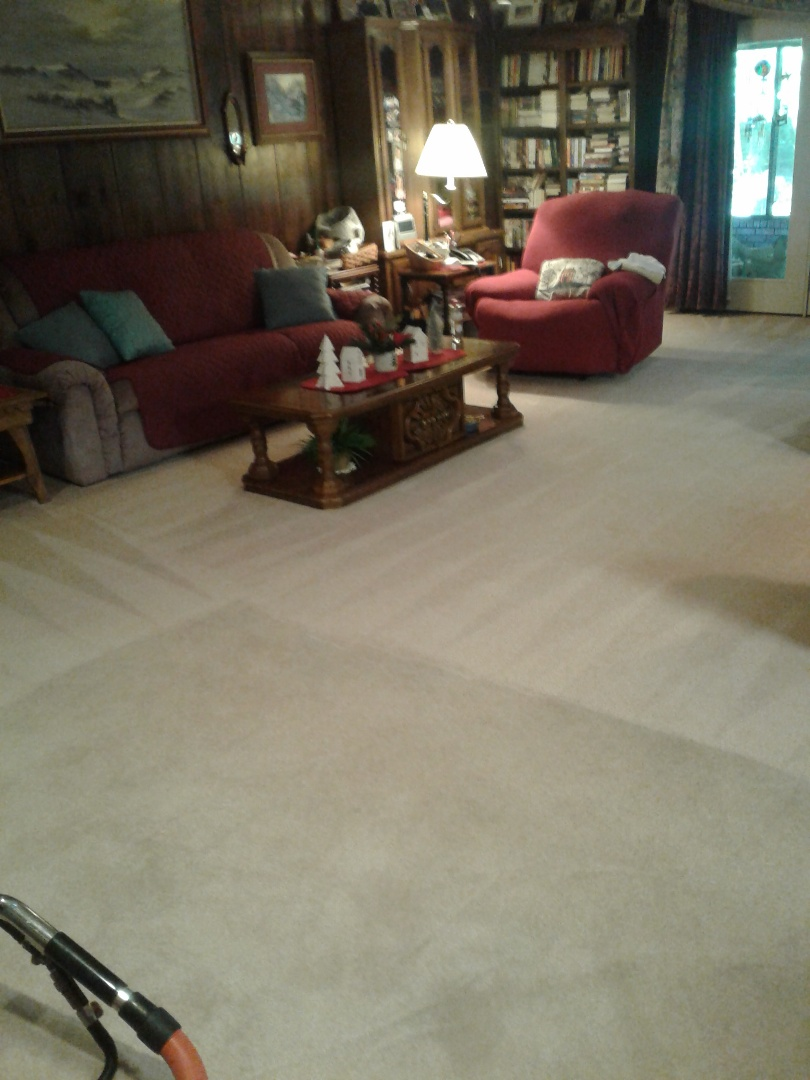 Cleaning carpet following up with scotch guard.
