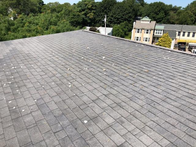 North Kingstown, RI - Doing a roof inspection on a coastal home with damage  to there roof from seagulls dropping shells on roof. working on a plan to keep seagulls away! And will recommend using GAF Timberline Ultra roof shingles, thicker with more protection from high winds and from the shells dropping