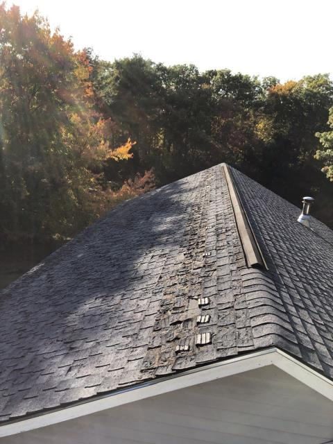 Coventry, RI - Inspecting a roof in Coventry RI. These shingles are defective. Recommending a new GAF Golden pledge warranty and a new GAF Timberline Ultra HD shingle. This roof would of been covered by GAF if they had the Golden Pledge.