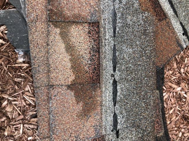 Salem, CT - Meeting with homeowner with missing shingles on there roof. High winds blew shingles that were nailed to high off roof. Improper nailing of shingles is one of the leading causes of shingles blowing off roofs. We will try to work with customers homeowners insurance to see if they cover the lose.