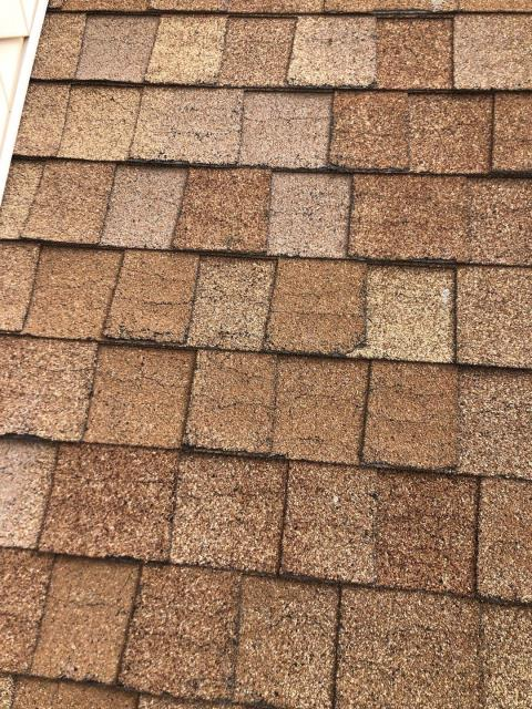 Charlestown, RI - A neighbor has asked us to inspect there roof for storm damage. They are watching our crew working on the roof next door to them and were impressed with the team work! This roof is dried out, needs better attic ventilation. Recommending the Best Roof shingle on the market, GAF Timberline HDZ roof shingle! With a full lifetime warranty
