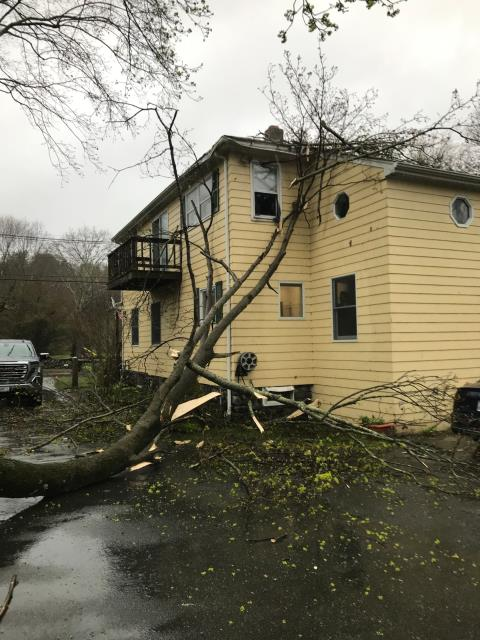 North Kingstown, RI - This tree was knocked down from high winds in North Kingstown RI.Home owners insurance company has been notified and we will be meeting with adjustor on site. New roof will be needed. Siding and exterior trim will be repaired