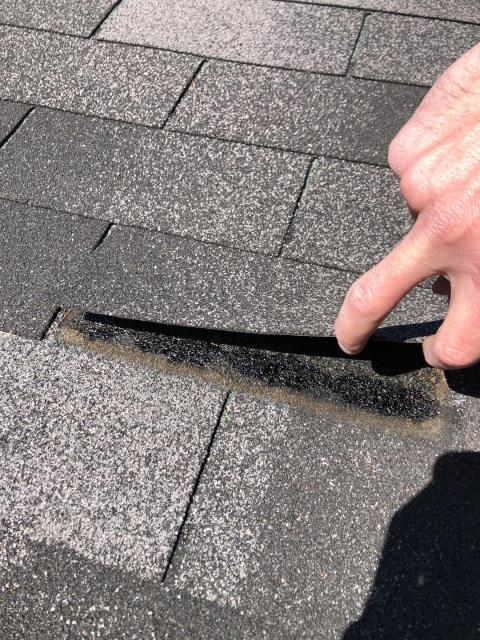 Hopkinton, RI - Roof inspection In Hopkinton RI. This glue strip is not adhering the shingles together. Roof is not vented properly and drying out. Installing a new GAF roof system with the proper ventilation will help prolong the life of the new GAF Timberline HDZ shingles.