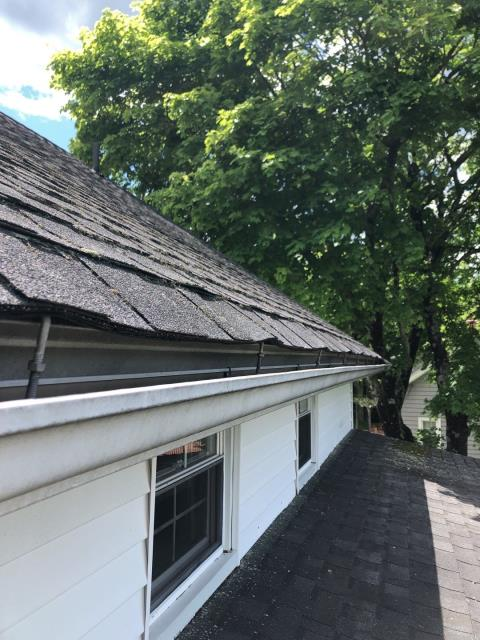 Richmond, RI - New roof needed in Richmond RI. Roof inspection to find leaks and missing shingles.