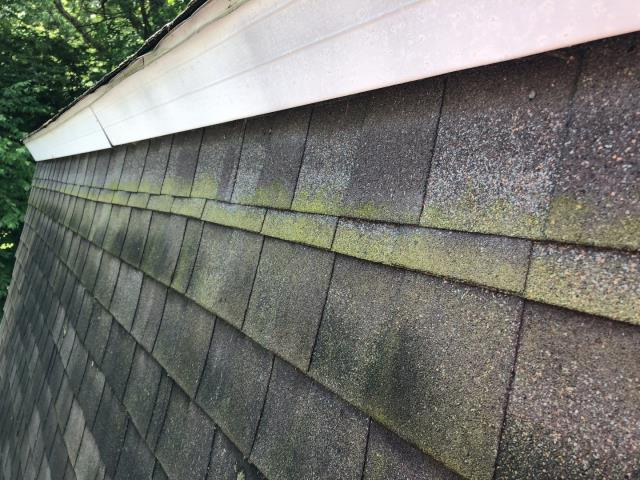 Ledyard, CT - Inspecting a roof in Ledyard Ct for a first time home buyer. Customer wants to know how many more years are left on this roof?  Full roof inspection being completed with a full roof report.