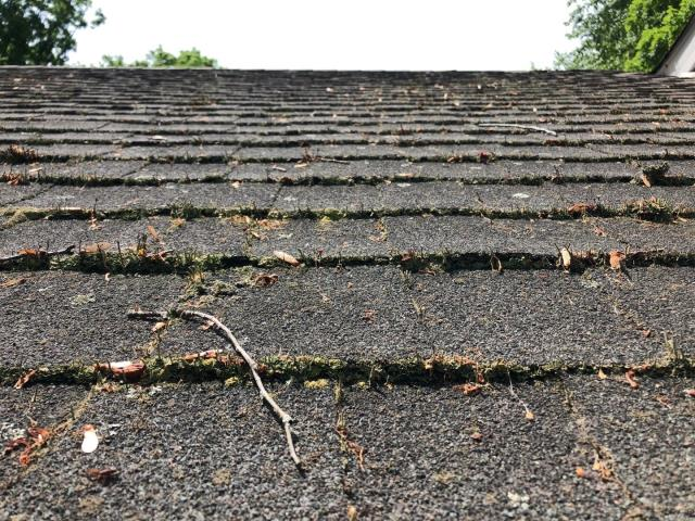 East Lyme, CT - Roof replacement for this old leaking roof in East Lyme CT. Heavy moss growing all over this roof. New GAF Timberline HDZ shingles with stain Guard plus will help slow this from happening again.