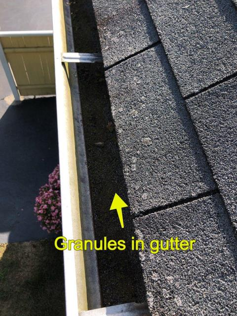 Stonington, CT - Inspecting a roof in Pawcatuck CT. This homeowner watched our crew replace their neighbors roof and now wants a price for his new roof! This three tab roof is losing granules at a rapid pace. This roof is past its lifespan and needs to be replaced. We recommend removing the old shingles and installing a new GAF Timberline shingle with a enhanced warranty.