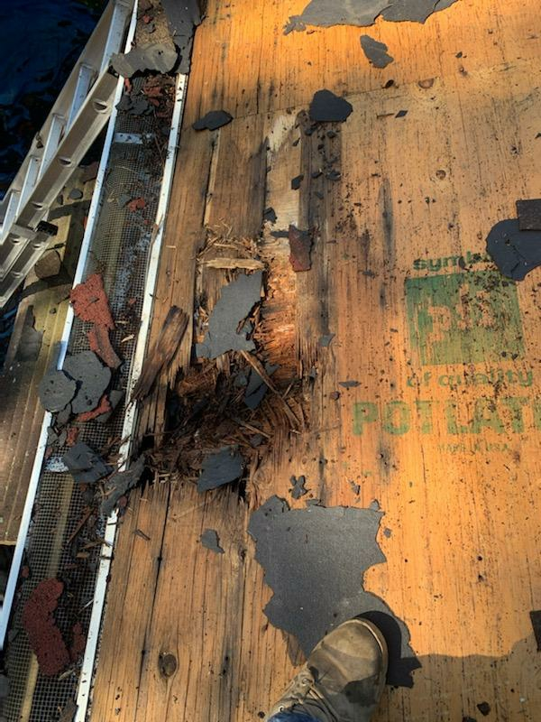 Hopkinton, RI - Rotted wood was found on roof deck. Now we'll replace new plywood.