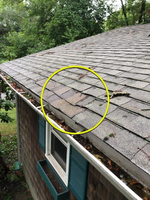 North Kingstown, RI - This roof in North Kingstown RI has been damaged by a fallen tree. High winds caused tree branch to fall on roof and damage roof and gutters. New roof replacement needed and new seamless gutters.