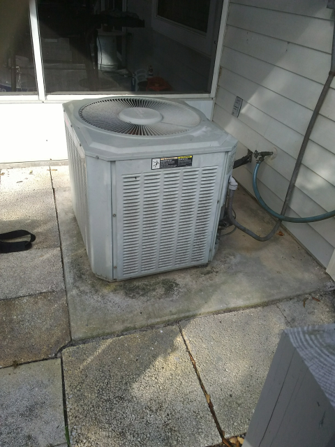 Tarpon Springs, FL - 5/20/2019-Our Team Member, Nathan responded to an unusual noise for a new customer. After looking at the system, he found a dead lizard and cleaned the system.