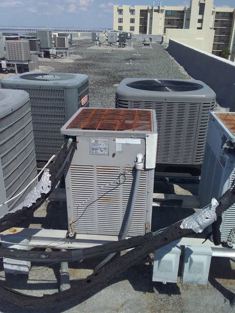 Clearwater, FL - 5/16/2019-Our Team Member, Dan Ficca ,quoted a customer on replacing a 22 year old A/C unit at a rental property.