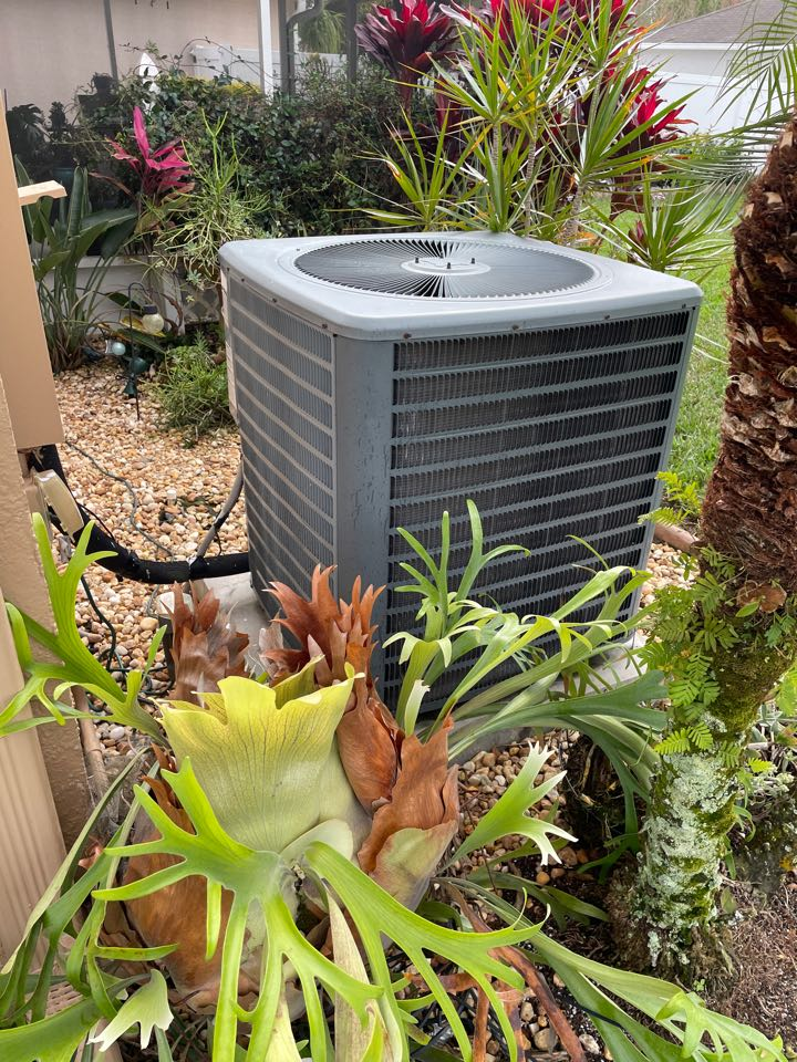 Land O' Lakes, FL - Performing maintenance and installing new nest thermostat