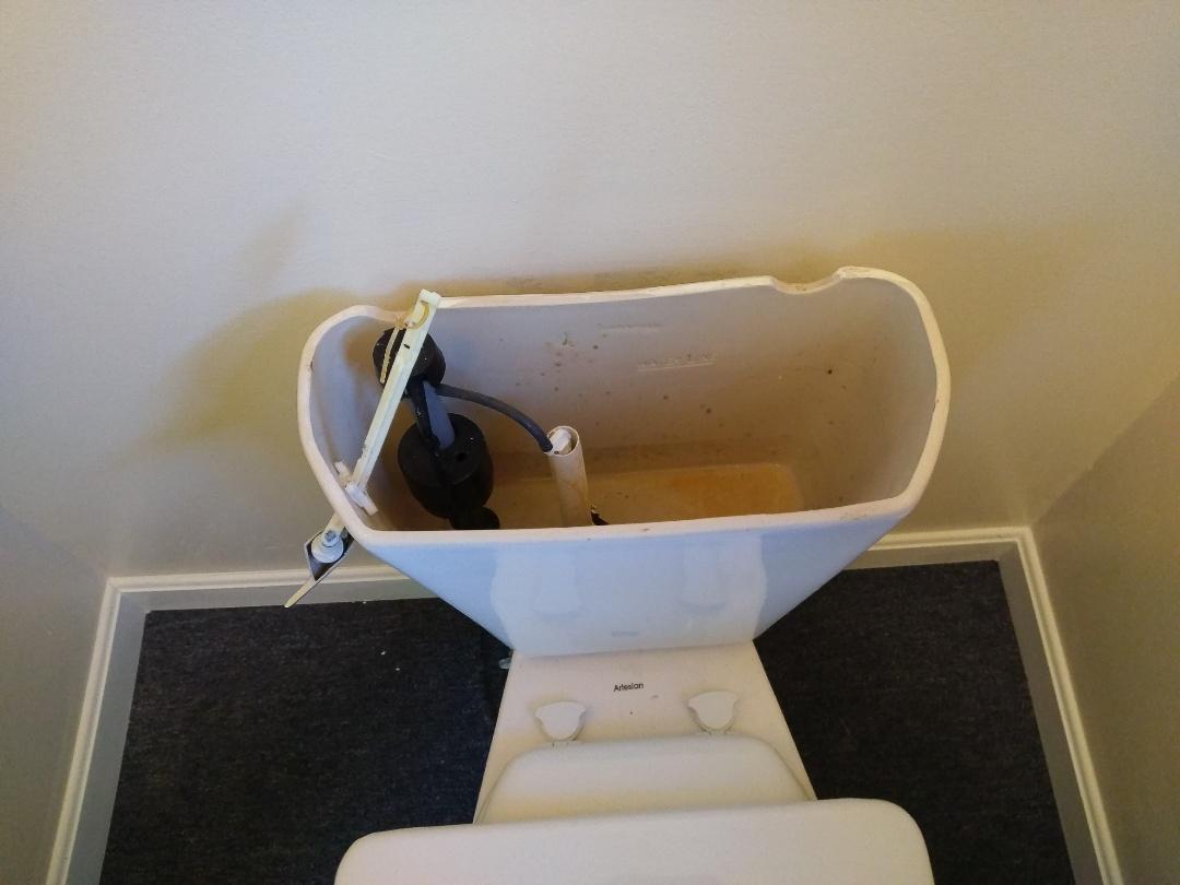 Weston, MA - Toilet repair