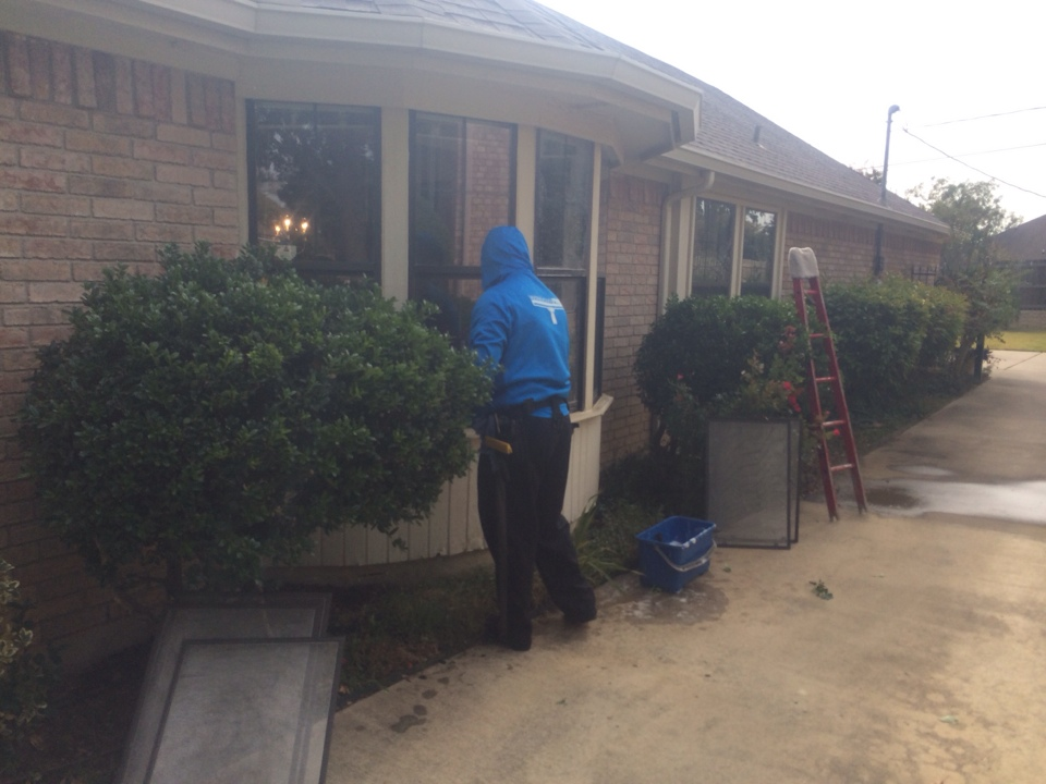 Arlington, TX - Window cleaning