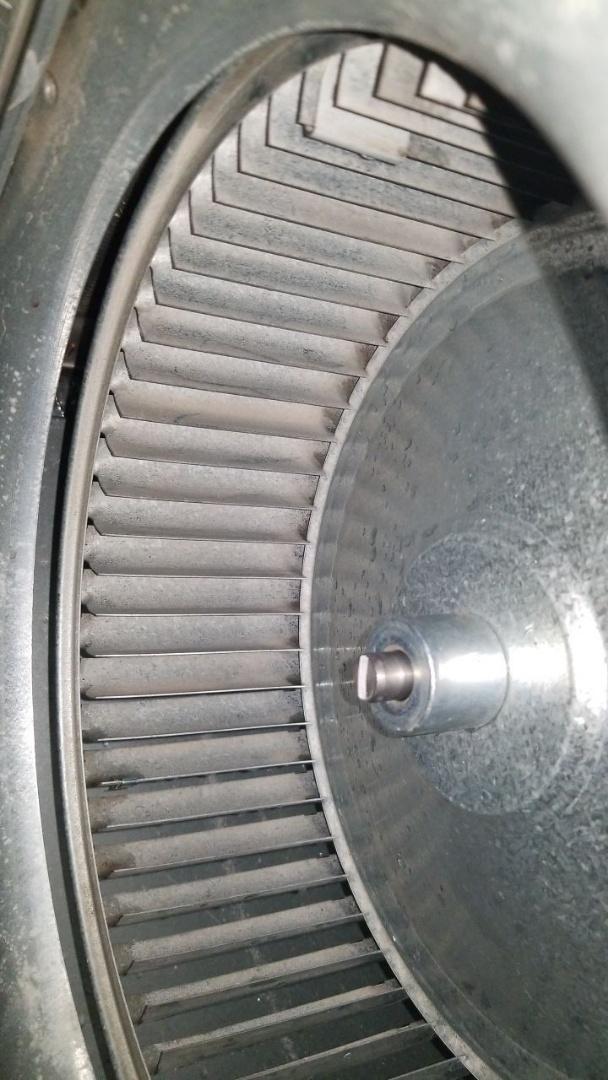Blower wheel cleaning York Furnace